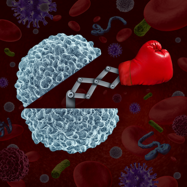 White blood cell 600 x 600